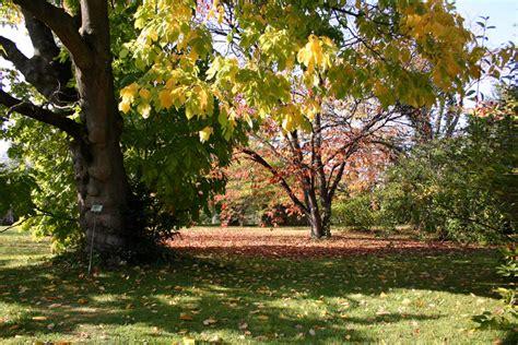Munich Botanical Gardens Munich Botanic Garden