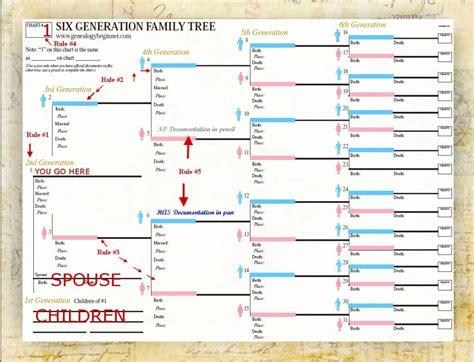 genealogy spreadsheet template natural buff dog