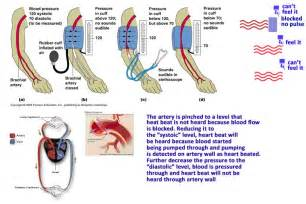 Blood pressure normal high low health care quot qsota quot tips and