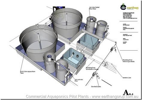 sle business plan on fish farming aquaponics systems commercial google search aquaponics