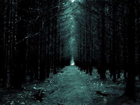 imagenes de paisajes terrorificos wallpapers abstractos paisajes bosques taringa