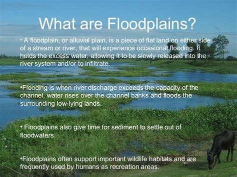what are floodplans floodplain presentation 2