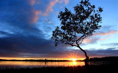 beautiful nightfall scenery  river side sunset tree