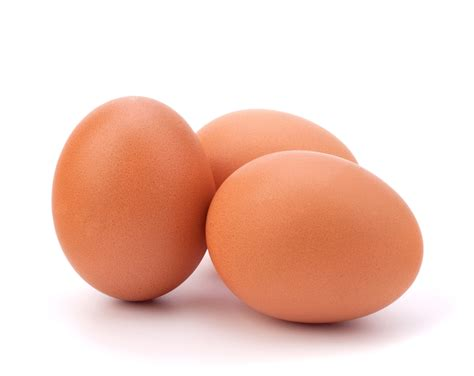 protein in eggs the 11 best protein sources for runners competitor