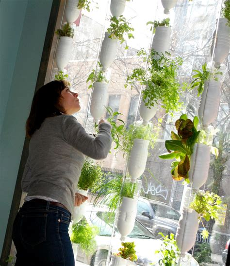 Vertical Gardening Pdf Secure Your Future And Retirement Be Self Sufficient