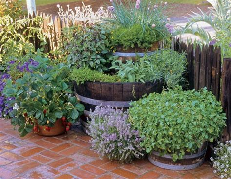 Potted Herb Garden Ideas Inspire Bohemia Unique Garden Planters And Displays