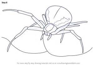 how to draw a boat from the first fleet learn how to draw a crab spider arachnids step by step
