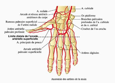 1409588750 avec mon doigt de ci de la radiologie day 2 une miette infirmi 232 re