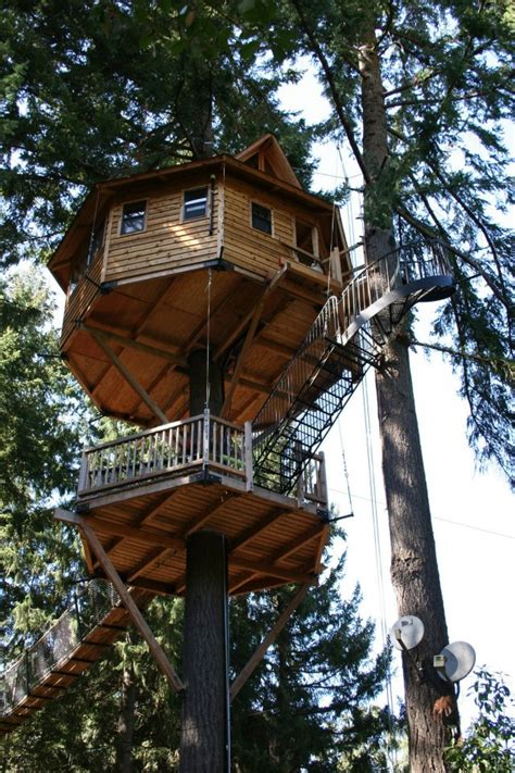 Houses With Big Porches 15 most amazing treehouses in america