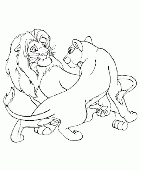 male lion coloring pages jungle animal pictures to print coloring home