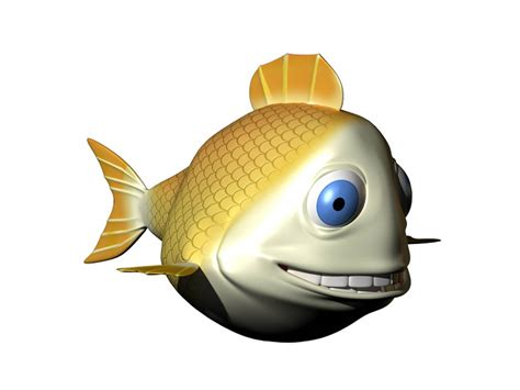 Quanki Search J D Fish S Fish