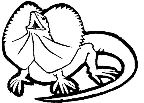 frilled lizard coloring pages frill neck lizard by hatterbourne pty ltd 520899