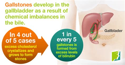 Can Detox Cause Weight Gain by Sluggish Gallbladder And Weight Gain Dandk