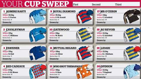 Sweepstakes Melbourne Cup - melbourne cup 2014 sweep the examiner