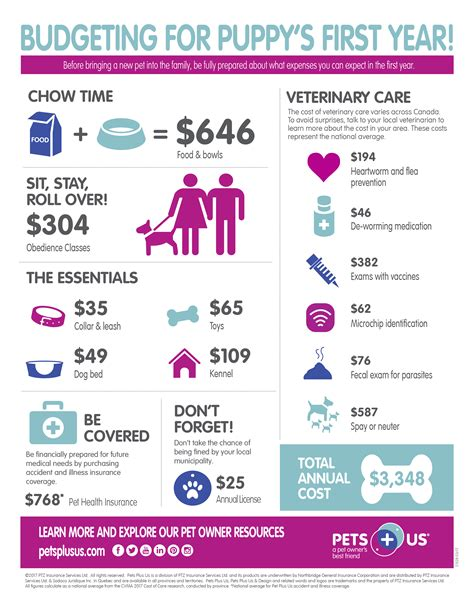 cost of a puppy year cost of pet care pets plus us