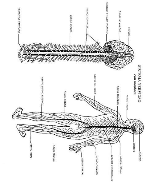 nia de mejor cuerpo nia de mejor cuerpo epistolario seg 250 n 193 lvaro miss