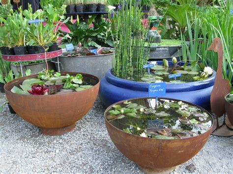 vasi per piante acquatiche vasi giardini in viaggio