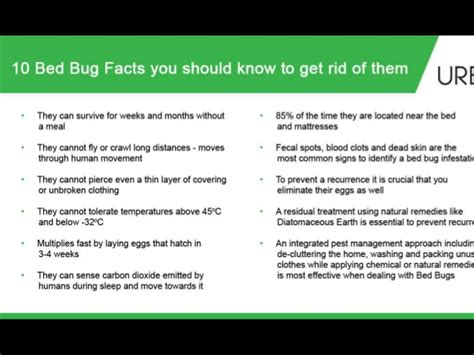 rid  flea bed bugs naturally