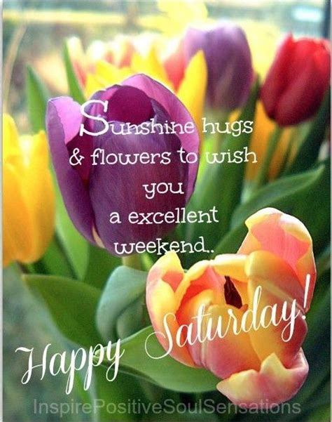 happy saturday 191 best images about happy saturday on pinterest