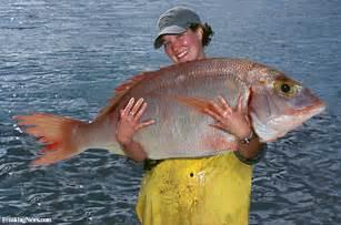 bid fish big fish catch pictures
