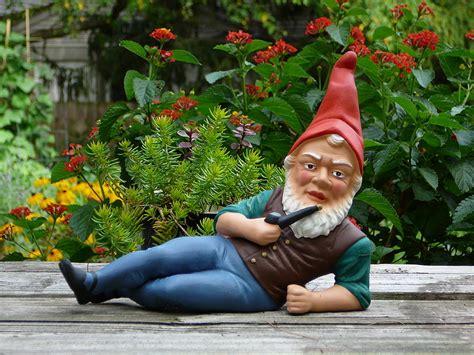 garden gnomes anyone the garden gnome classic
