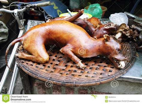 boiled dogs cooked stock images image 35235314