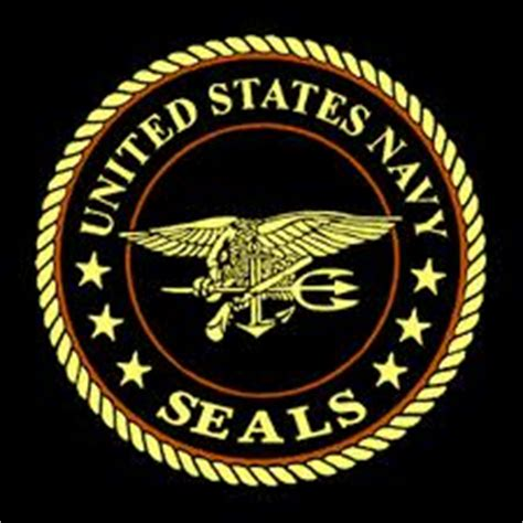 seal ai navy seals daring rescue of two hostages held in somalia