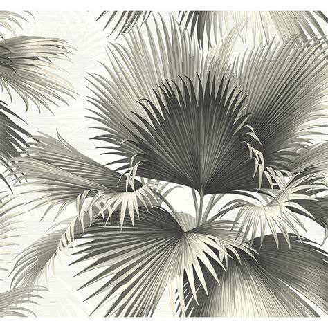 Home Depot Kitchen Design Services Kenneth James Endless Summer Black Palm Wallpaper Sample