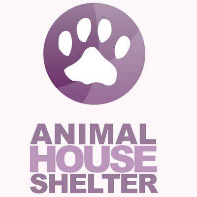 animal house huntley animal house shelter huntleyahs twitter