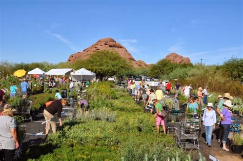 Spring Plant Sale At Desert Botanical Gardens Botanic Garden Plant Sale
