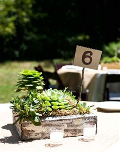 24 Succulent Centerpieces For Your Reception Table