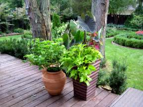 Potted Garden Ideas Garden Ideas Pot Plants Best Garden Ideas