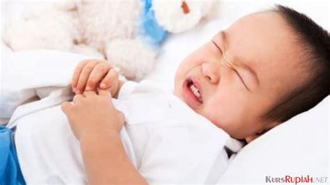 Obat Lacto B bisa dicur dengan harga obat diare lacto b untuk