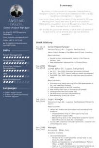 senior project manager resume sles visualcv resume