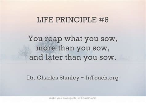 You Reap What You Sow Essay by 1000 Images About You Reap What You Sow On Its Always Quotes And