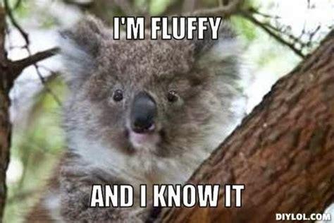Koala Meme - speak of the devil the last ride of governor mittens