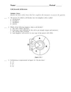 section 10 1 cell growth answers cell growth and division worksheet wiildcreative