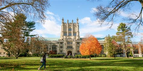colleges for the arts in new york