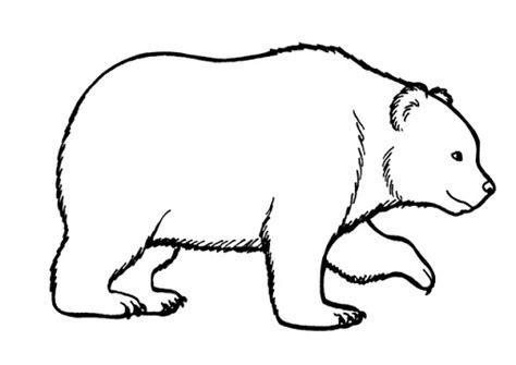 imagenes bonitas para poder dibujar las fotos de osos para colorear est 225 n aqu 237 para descargar