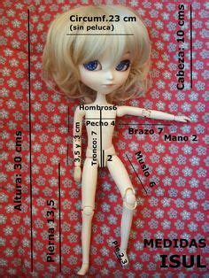 fashion doll size chart kidz n cats doll measurements dolls size comparisons