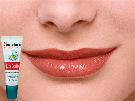9 Of My Favorite Lip Products 2 by Himalaya Herbals Lip Balm 10 Gm Ayurvedic Lip Care 4