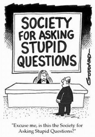 Ask A Stupid Question Ask A 2 by Stupid Questions David W Ramey Dvm