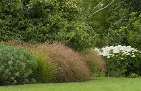 Landscape Shrubs Pictures Shrub Garden About Gardens