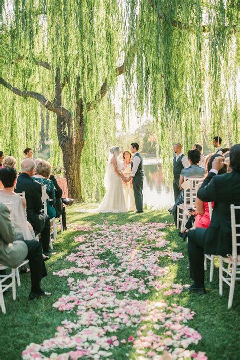 tree wedding 25 best ideas about willow tree wedding on