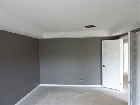 feature wall dulux quot exposed elements quot skirting ceiling is dulux quot white quot luxurious