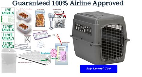 travel crate sky kennel 500 all in one airline pet travel package kats n us