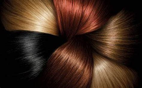 14 best hair color chart images on hair color charts lace wigs and synthetic hair superior preference fade defying permanent hair color l or 233 al