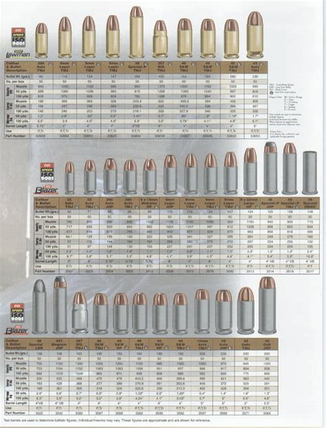 Cartridge Bullet Poster Diagrams Ammo Caliber Sizes Schooling Guns Weapons