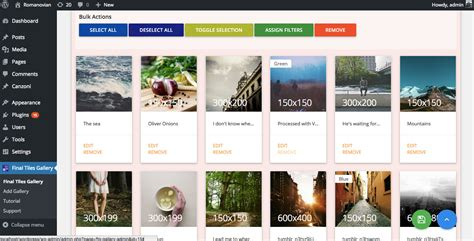 masonry layout gallery wordpress final tiles wordpress gallery by greentreelabs codecanyon