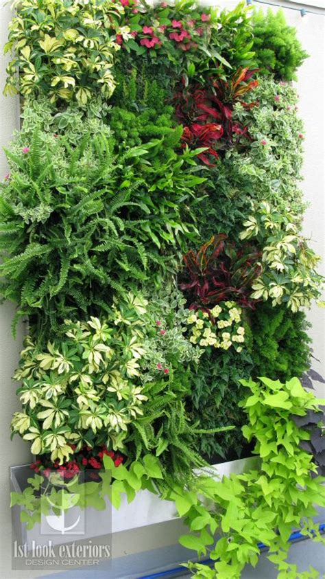 Vertical Landscape Definition 25 Best Ideas About Vertical Gardens On Wall